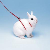 Ferplast Поводок NY RAB для кроликов