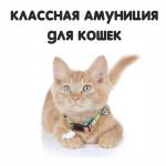 Ошейники и шлейки для кошек (35)