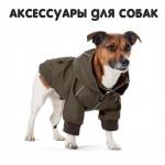 Аксессуары для  собак (242)
