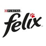 Феликс (24)