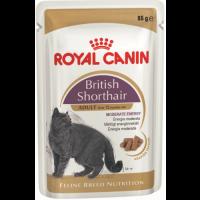 Royal canin british shorthair adult в соусе консервы для кошек британской породы
