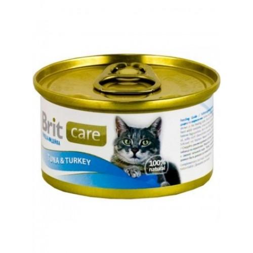 Как кормить шотландского вислоухого котенка Чем кормить